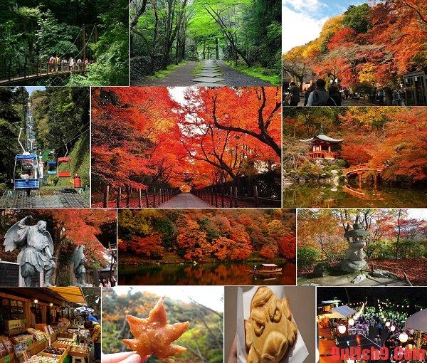 Núi Takao – Điểm tham quan nên đến khi du lịch Nhật Bản tự túc