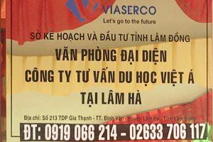 Viet A Lam Ha 1
